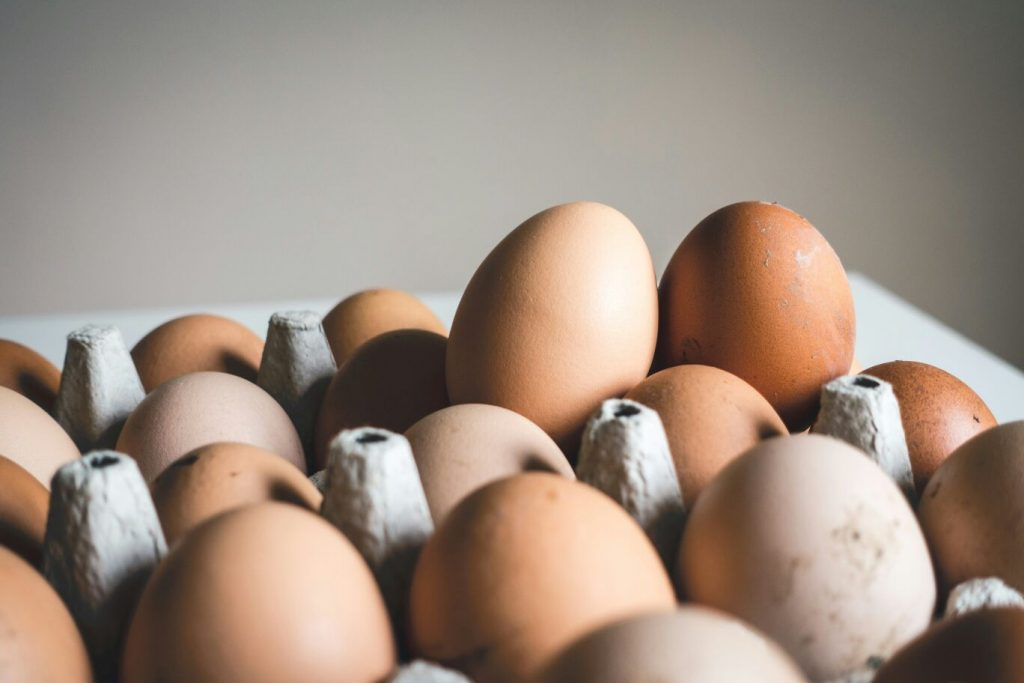 Telur merupakan makanan yang dapat meningkatkan imun tubuh