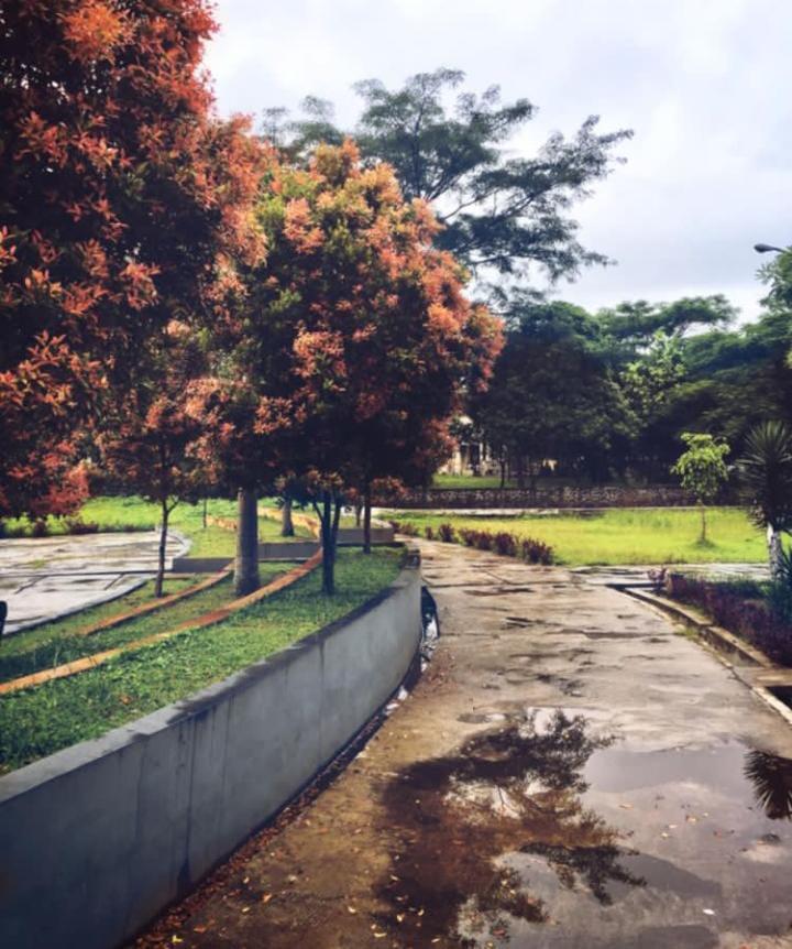 Gambar Taman Dadaha