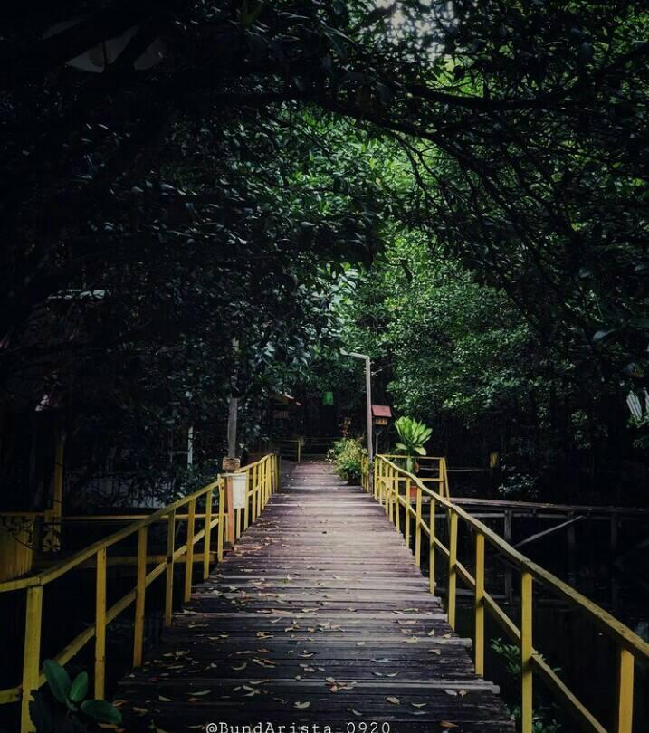 Gambar Taman wisata graha mangrove yang merupakan tempat wisata di bontang