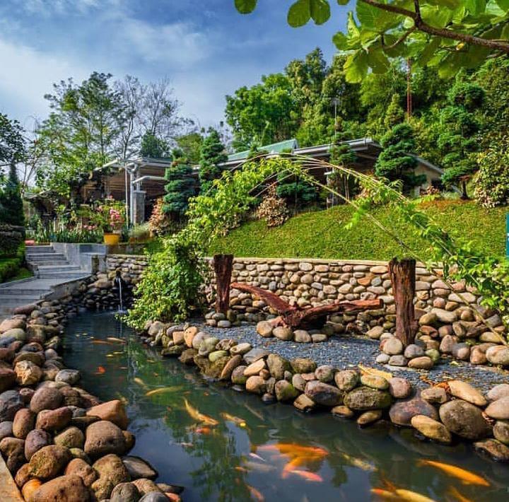 Gambar dari The Le Hu Garden Medan