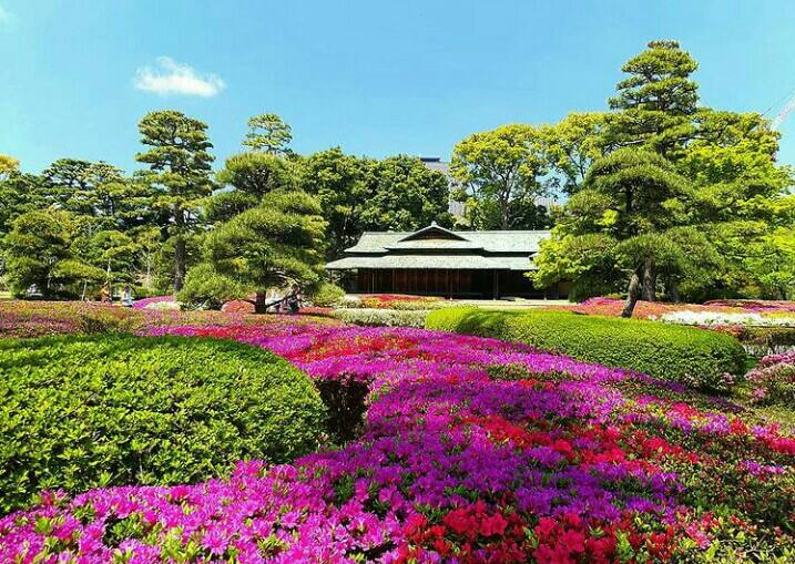 Gambar  Imperial palace east garden