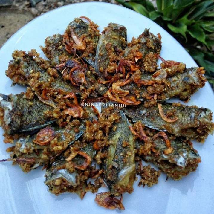 Gambar Papuyu yang makanan super mewah dan lezat