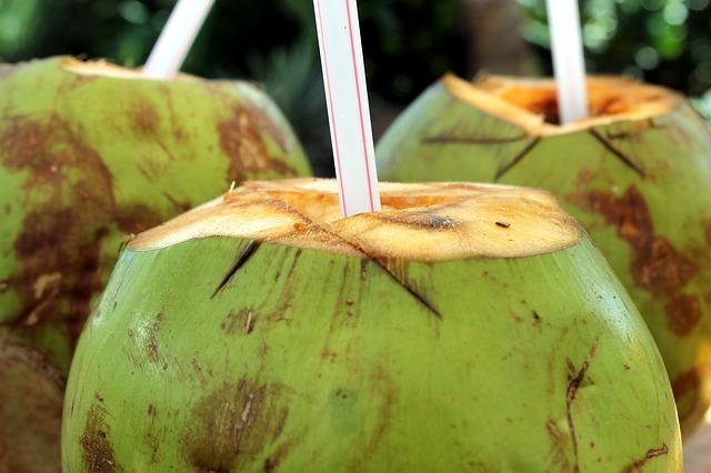Gambar air kelapa muda. Air kelapa muda merupakan cara mengatasi batu ginjal